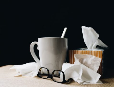 The combination of flu season and an pandemic with increasing cases causes a need for mindfulness about immune health. (Photo courtesy of Kelly Sikkema)